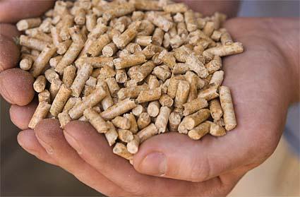 Producția de energie din biomasă va fi extinsă