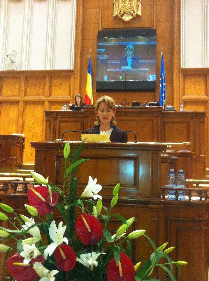 Vicepreședintele Comisiei pentru românii de pretutindeni: Unirea celor două state românești nu are culoare politică