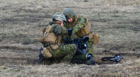 România și Republica Moldova, batalion mixt