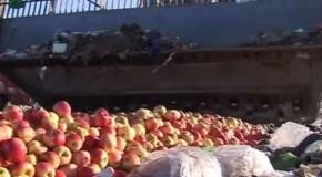 """""""Implicaţiile geopolitice"""" ale mărului moldovenesc"""