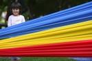 Guvernul Republicii Moldova, aviz pozitiv pentru numirea limbii române drept limbă de stat în Constituție