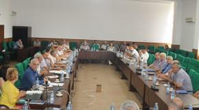 Primarii din Vaslui și primarii din Cantemir, planuri pentru proiecte cu fonduri europene