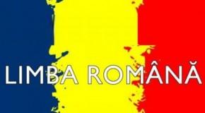 Academia Română și Academia de Științe din Rep. Moldova vor sărbători împreună Ziua Limbii Române