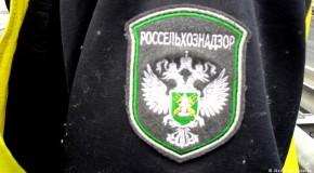 """Rosselhoznadzor îşi bate joc de producătorii din Rep. Moldova, în timp ce Igor Dodon promite """"cai verzi pe pereţi"""""""