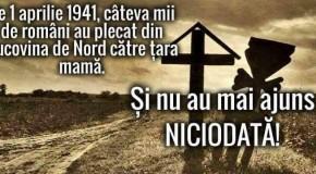 1 aprilie 1941: Mii de români au plecat din nordul Bucovinei către Țară și nu au mai ajuns niciodată