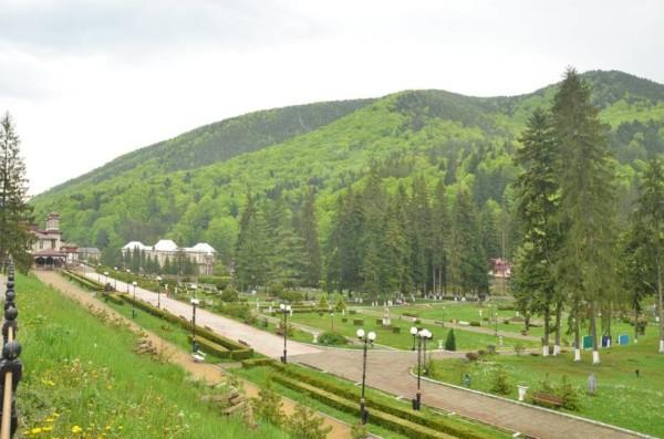 Sursă foto: desteptarea.ro