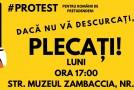 """Protest cu mături și fărașe la Ministerul pentru Românii de Pretutindeni: """"Dacă nu vă descurcați, plecați!"""""""