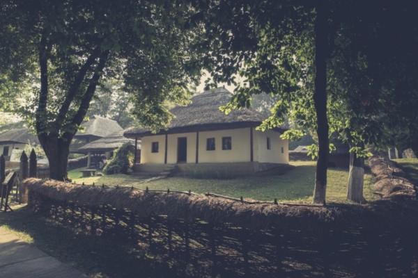 Sursă foto: merg.in.ro